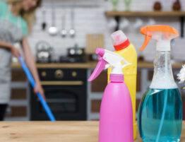 Prestaciones empleadas domésticas
